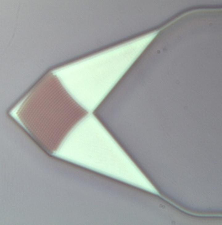 Fokussierender 2D-Gitterkoppler