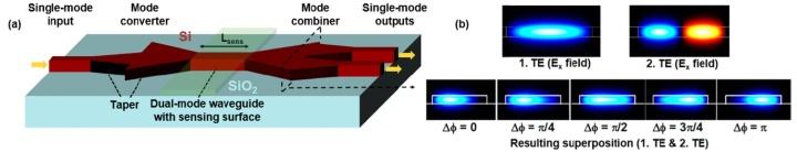 Prinzipieller Aufbau und Funktionsweise eines Zweimodeninterferometers (Dual-mode Interferometer, DMI).