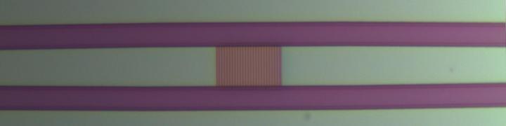 Polarisationsteilender Gitterkoppler